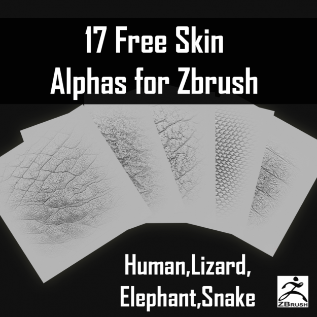 Download Free ZBrush Skin Alphas Pack