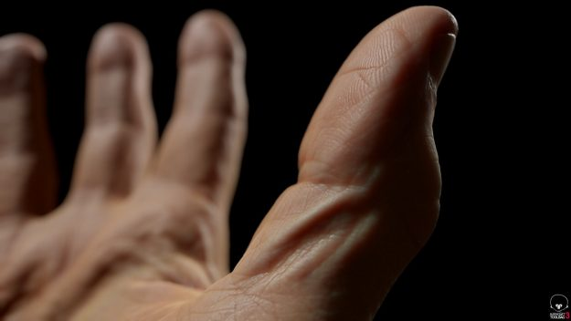 Realistic hand scans models